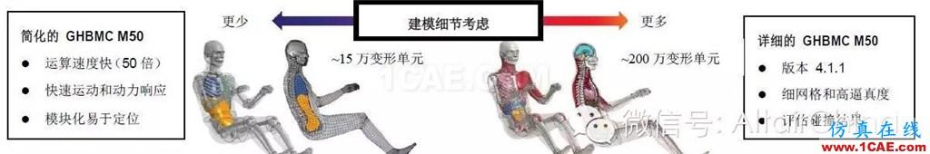 维克弗里斯特大学基于HyperWorks开发车辆碰撞仿真的人体模型hypermesh分析案例图片3